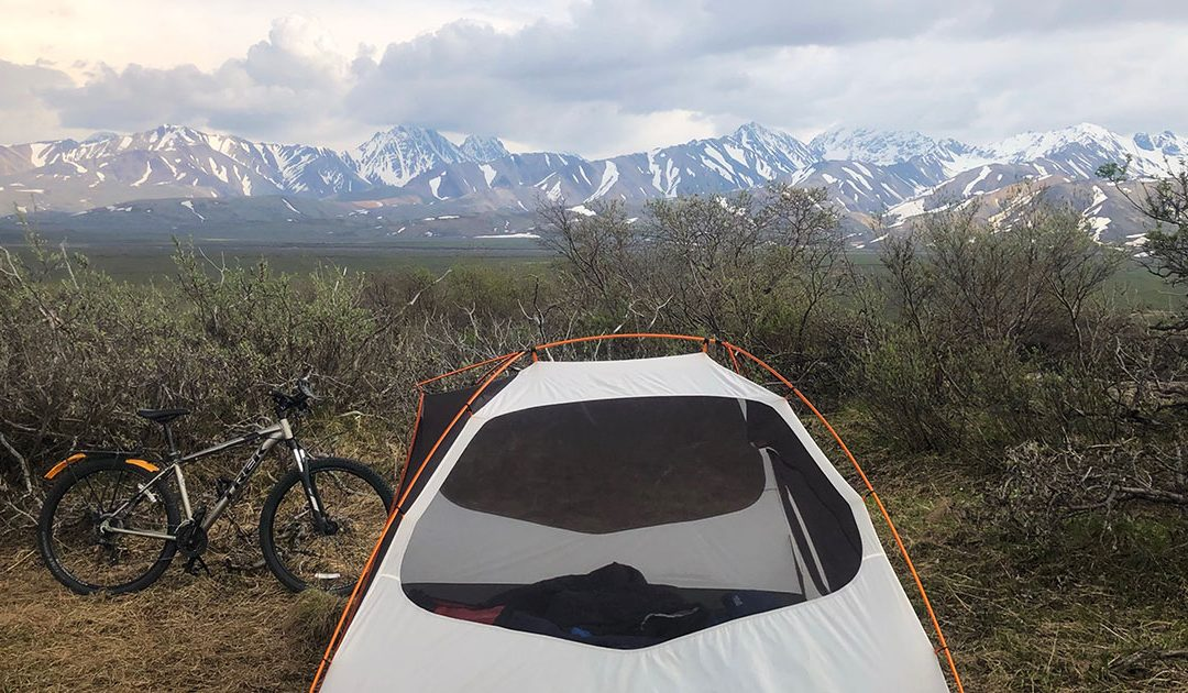 Bicycle Camping in Denali June 2020